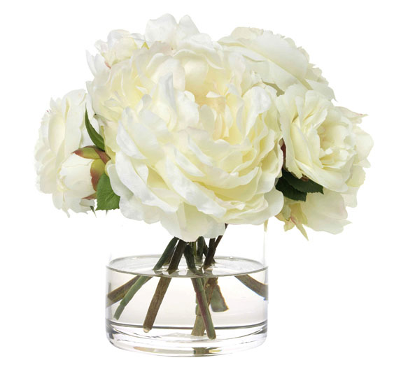 CREAMY CAMELLIAS AND PEONIES