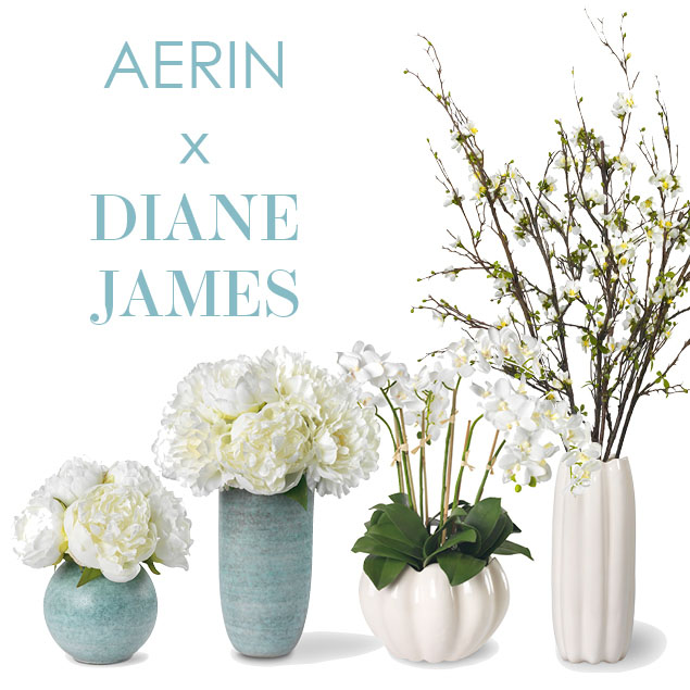 aerin x diane james