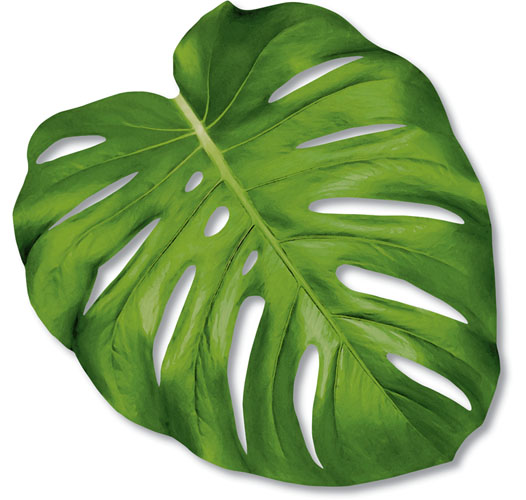 KITCHEN PAPERS DIE CUT MONSTERA LEAF PLACEMATS