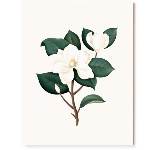 CLAP CLAP MAGNOLIA SCENTED CARDS / SET OF 5