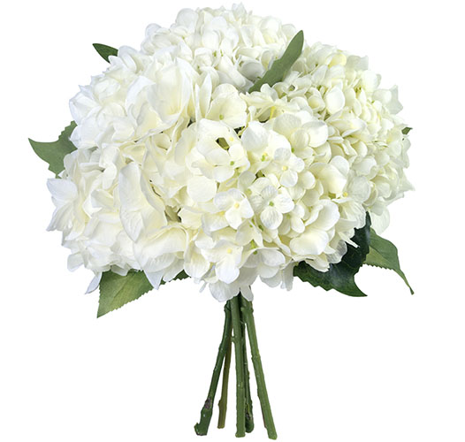 HAND-TIED HEAVENLY WHITE HYDRANGEAS