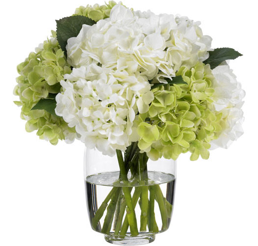 HEAVENLY GREEN AND WHITE HYDRANGEAS