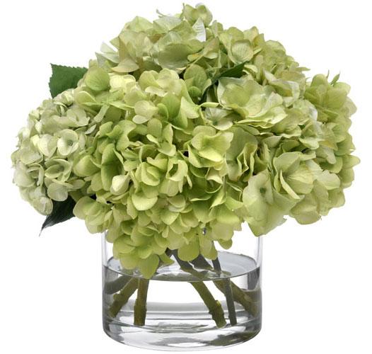 Diane James Heavenly Green Hydrangeas Transitional