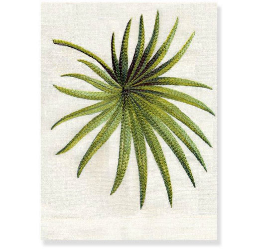 PALMETTO GUEST TOWEL