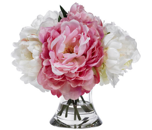 BLOOMS PINK AND WHITE PEONIES