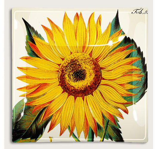 BEN'S GARDEN SUNFLOWER SQUARE TRAY