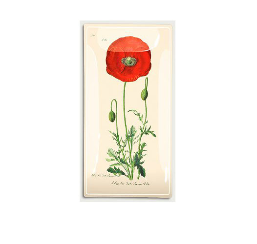 RED POPPY STEM TRAY
