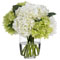 Diane James Heavenly Green and White Hydrangeas