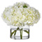 Diane James Heavenly White Hydrangeas