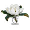 Diane James Magnolia in Bud Vase